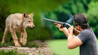 Hunters were hunting a little wolf cub suddenly something supernatural hapened to them in the forest