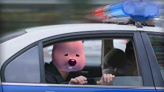 루피 체포