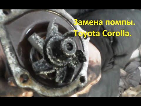 Замена помпы  Toyota Corolla