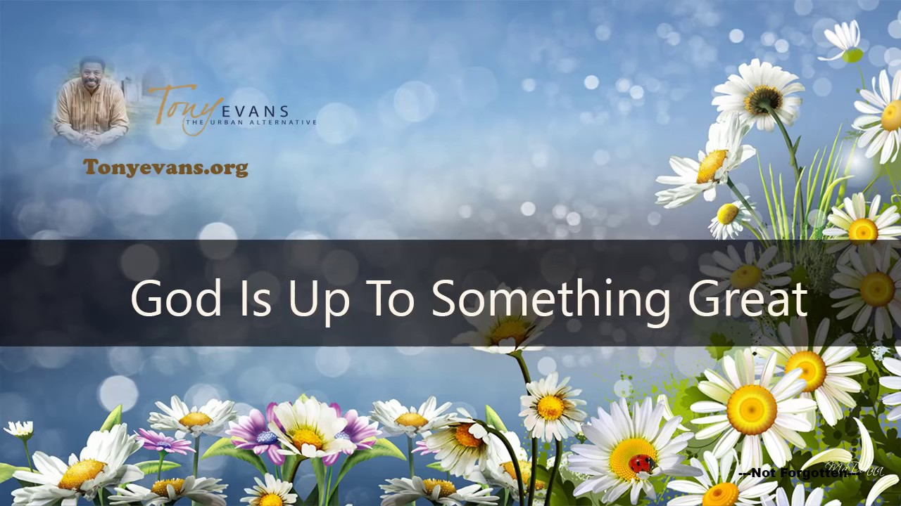 Best Of Tony Evans 2016 God Is Up To Something Great Tony Evans