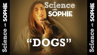 Science with Sophie: Dog Diversity thumbnail