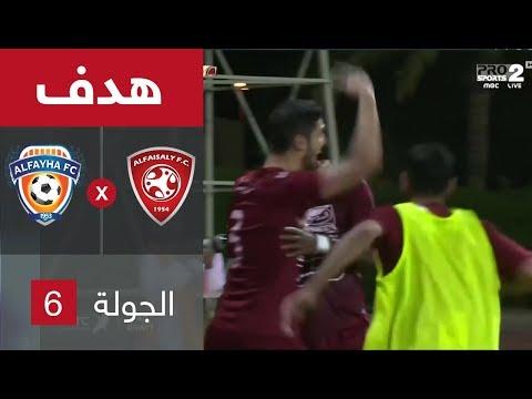 فيديو : الفيصلي يفوز على الفيحاء بهدفين مقابل هدف فى  الدوري السعودي للمحترفين