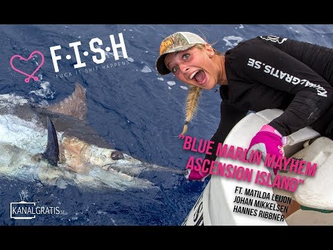 ♡ F.I.S.H - Blue Marlin Mayhem on Ascension Island
