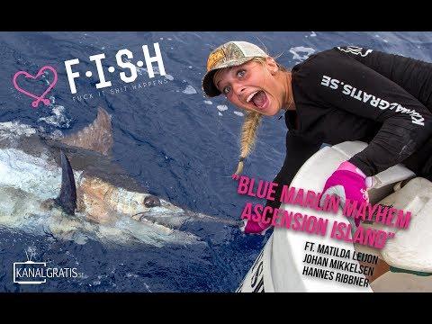 ♡ F.I.S.H - Blue Marlin Mayhem On Ascension Island