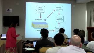 Drug interaction with lipid membrans - Prof. Monica Pickholz (UBA/Argentina)