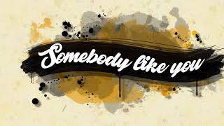 Baixar VINNE & SoFly - Somebody Like You (Lyric Video)