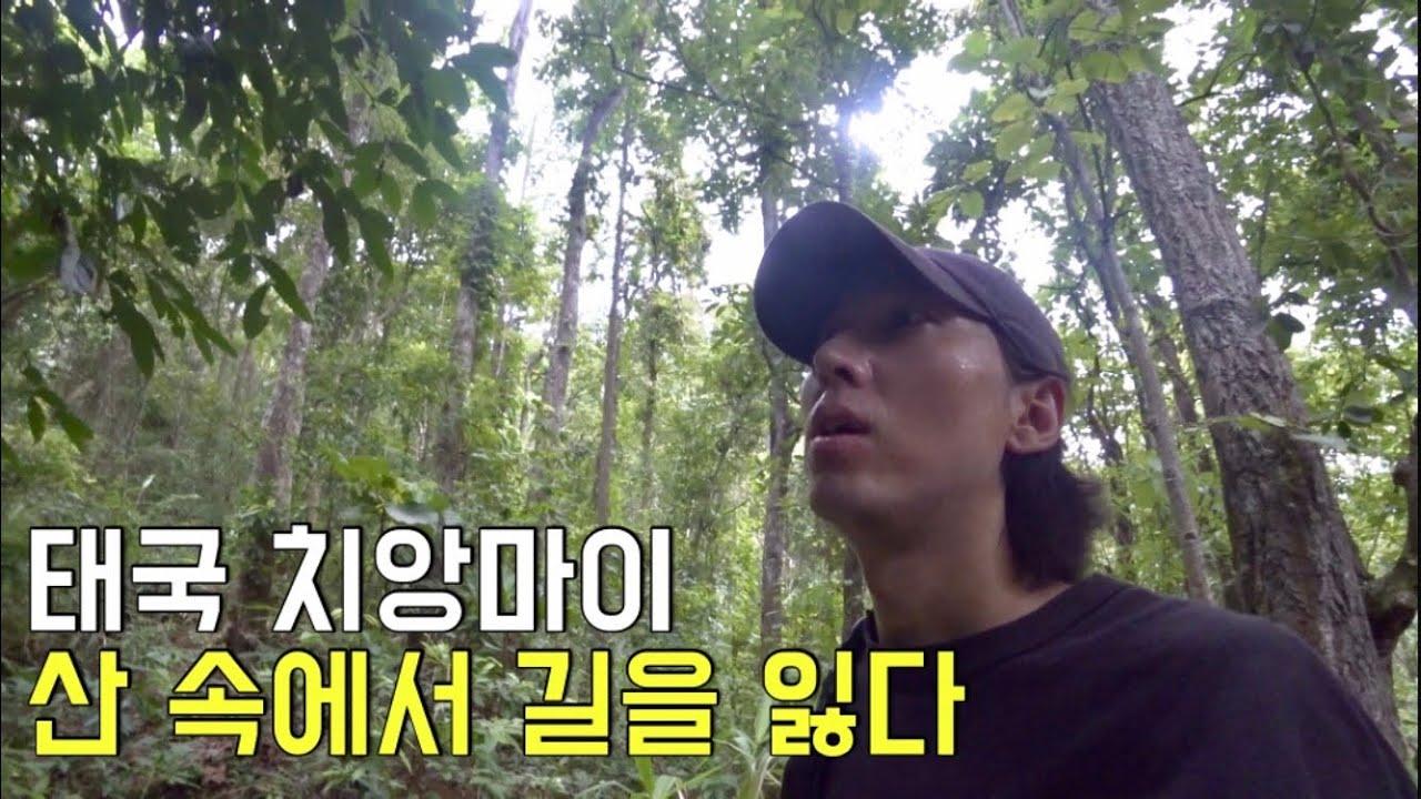 태국 치앙마이 도이수텝을 혼자 걸어서 올라가봤습니다만.. 여긴 어디..?