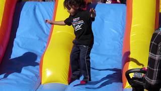 SHF Activities 2017