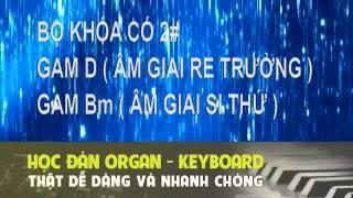 BỘ KHÓA CÓ 2# - GAM D ( RE TRƯỞNG ) - GAM Bm ( SI THỨ )