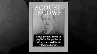 Celf:  Sgows / Scouse