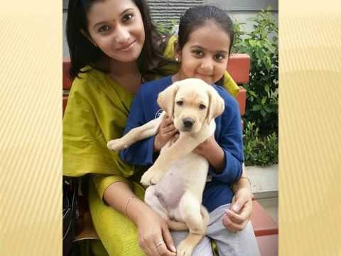 Kalyanam Mudhal Kadhal Varai Child Actress Pooja Unseen Images - விஜய் டிவி