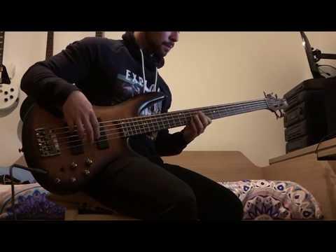 Izal - El Pozo [bass cover]