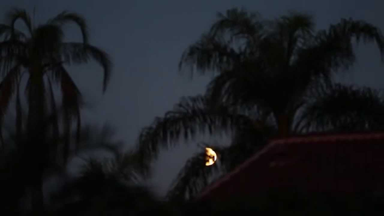 blood moon today in florida - photo #31