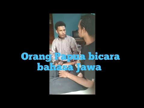 Viral obrolan orang papua pakai bahasa jawa (bintuni vs kokoda)