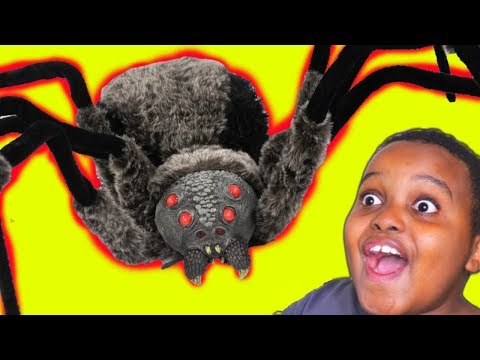 Thumbnail: GIANT SPIDER vs Shiloh And Shasha - Onyx Kids