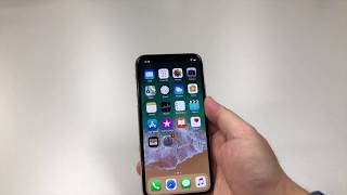 Apple iPhone X Unboxing and Key Features!