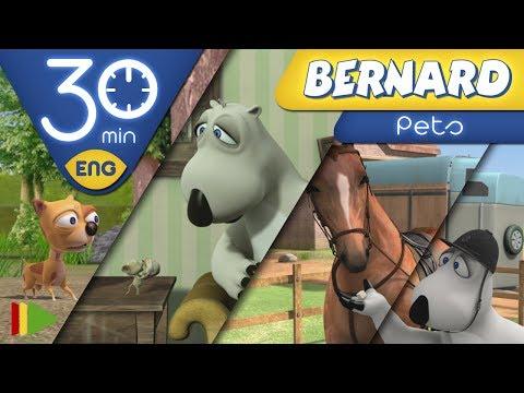 Bernard Bear | Pets | 30 minutes