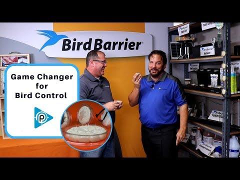 Game Changer for Bird Control (episode 72)