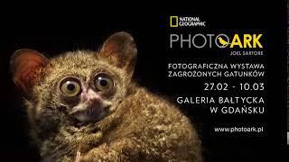 Wystawa Photo Ark w Gdańsku