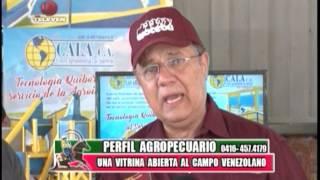 Perfil Agropecuario   TELEVEN