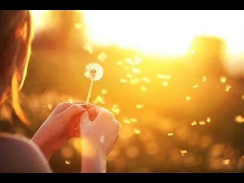 Respirar para estar en calma · 10 minutos que pueden cambiar tu día