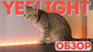 Обзор светодиодной ленты Yeelight Xiaomi LED Lightstrip Plus | От «Румиком», магазина Xiaomi