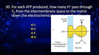 I PUC   Biology   CET/NEET   Respiration in plants, Plant growth and development