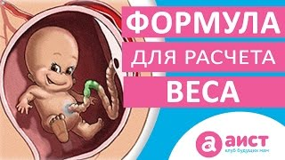 видео Вес плода по неделям беременности