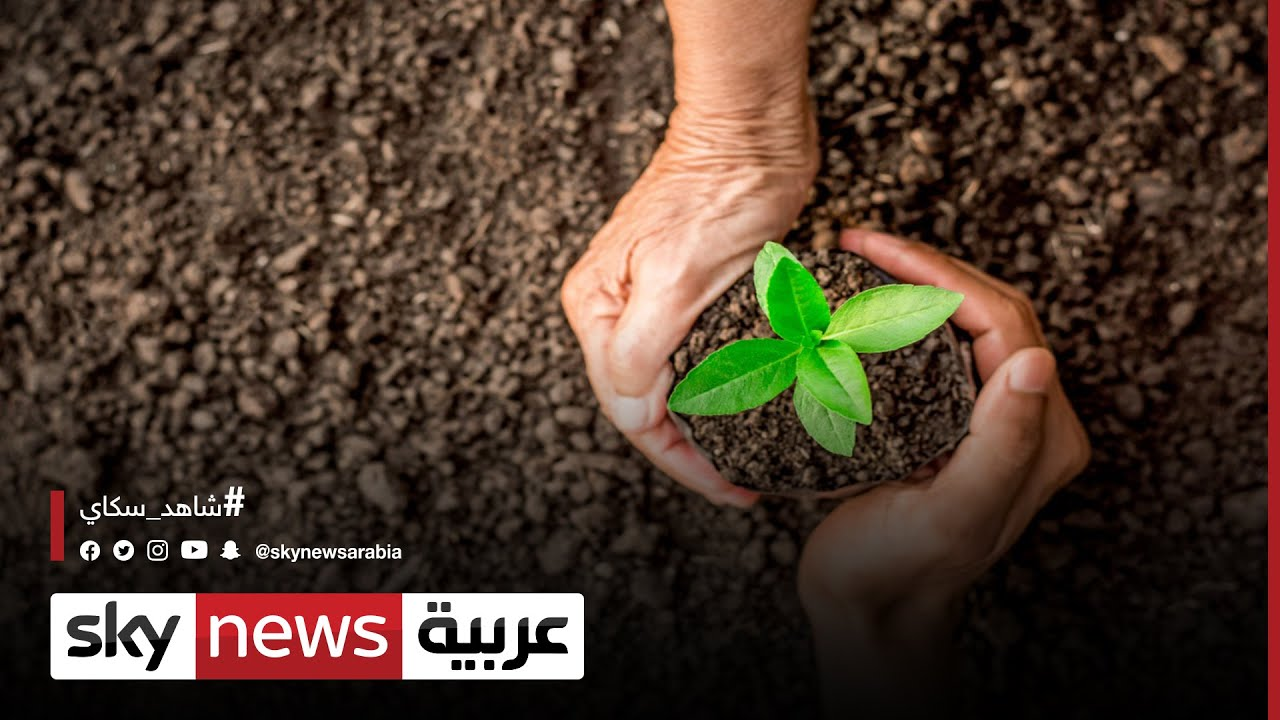 دور ريادي لدولة الإمارات في حماية البيئة ومواردها  - 12:58-2021 / 4 / 4
