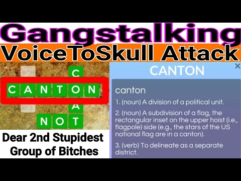 20200322_202926-🗣️-voicetoskull-attack---buzz-🔤-canton-⚠️-2nd-stupidest-bitches