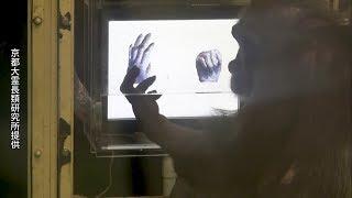チンパンジーは、じゃんけんのルールを理解できるとする実験成果を8月...
