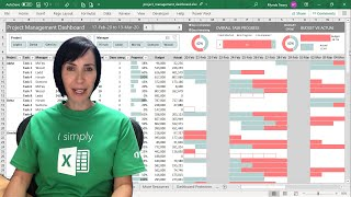 Interactive Excel Project Management Dashboard - FREE Download