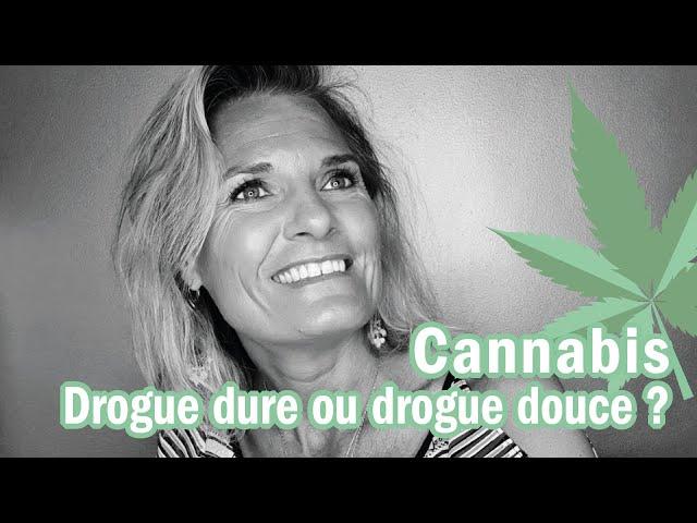 Cannabis - Bedo : drogue dure ou drogue douce ?