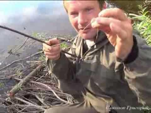 видео: Примитивная рыболовная удочка из крапивы и газовой зажигалки.