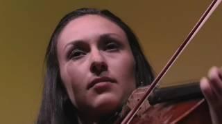 Violist   Deanna Badizadegan   TEDxStanford