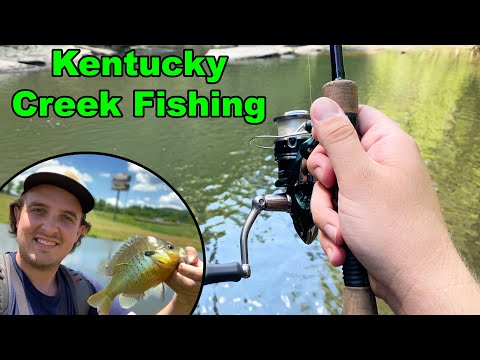 KENTUCKY CREEK FISHING | Detour Leads To An Urban Pond Full Of GIANT FISH!