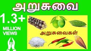 அறுசுவை | Arusuvai | Learn name of tastes in Tamil for Kids and Children | தமிழரசி | Tamilarasi