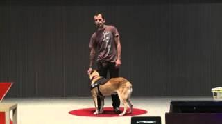 Terapias realizadas con perros | Miguel de Prado | TEDxGijon