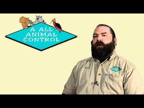 Wildlife Management Job Opportunities