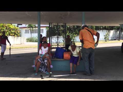 Parada cubana a la sombra