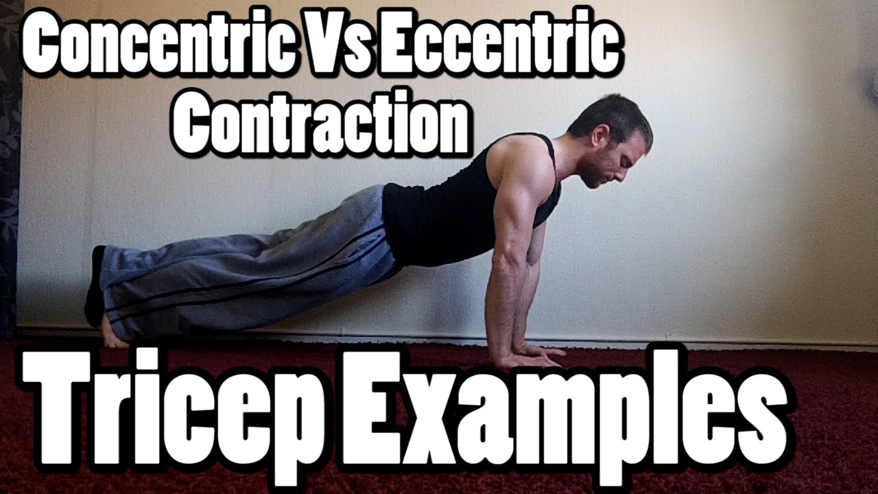 Types of muscle contractions | redefining strength.