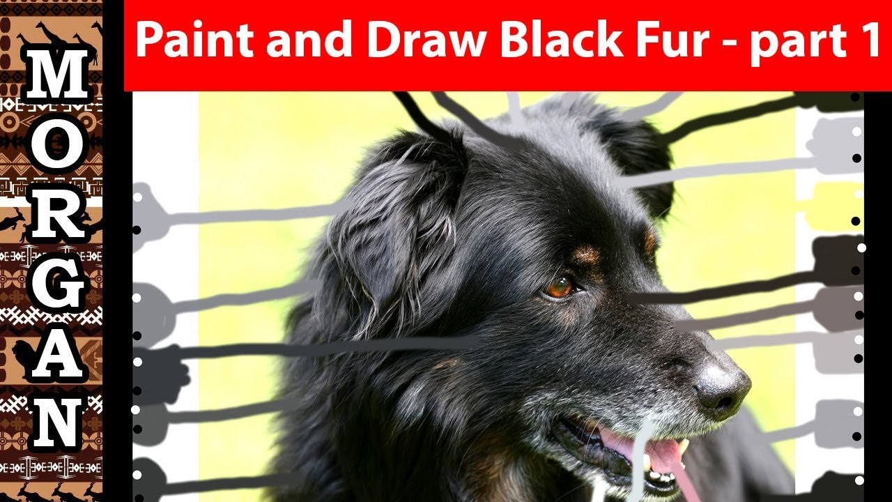 How to paint and draw black animals part 1