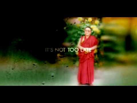 Tenzin Delek Rinpoche