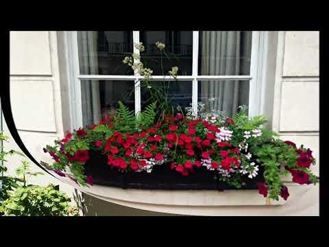 30 идей Как красиво оформить свой балкон цветами
