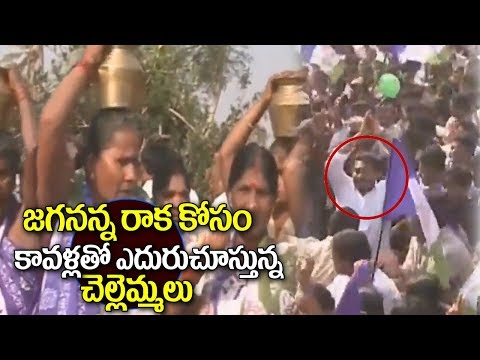 YSRCP President YS Jagan Enters Ichapuram Constituency in Srikakulam District | Pada yatra | Adya