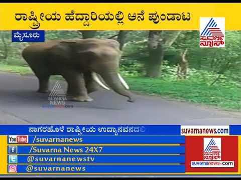 Wild Elephant Attacks Bus At Nagarahole Forest