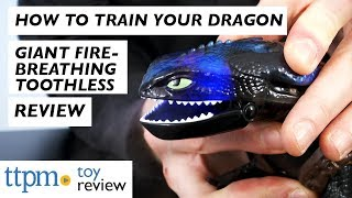 How to Train Your Dragon The Hidden World Giant Fire Breathing Toothless from Spin Master