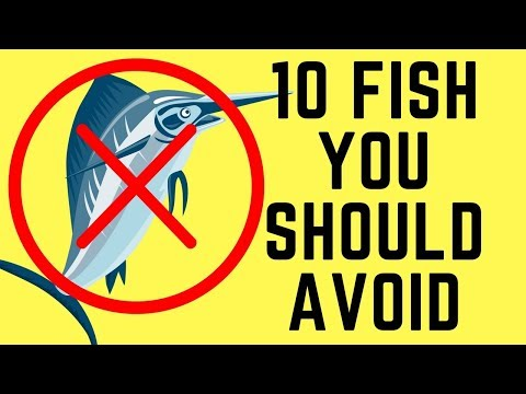 10 Kinds Of Fish You Should Avoid