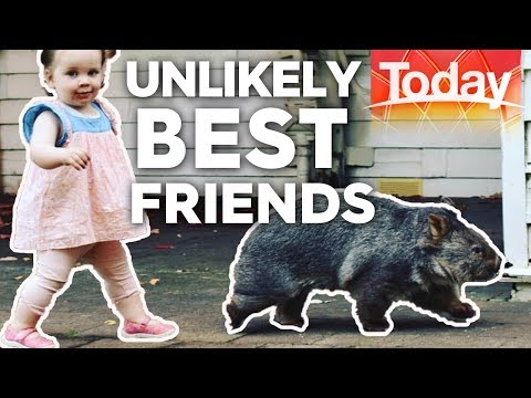 Isabella and Boo: the unlikely best friends | Today Show Aus