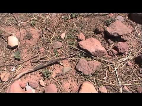 Puma Punku: Evidence Of Ancient Explosion Near Tiwanaku